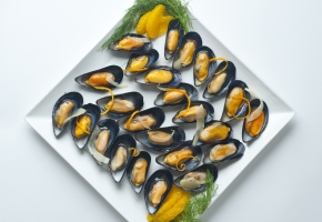 PEI Mussels on the Half Shell