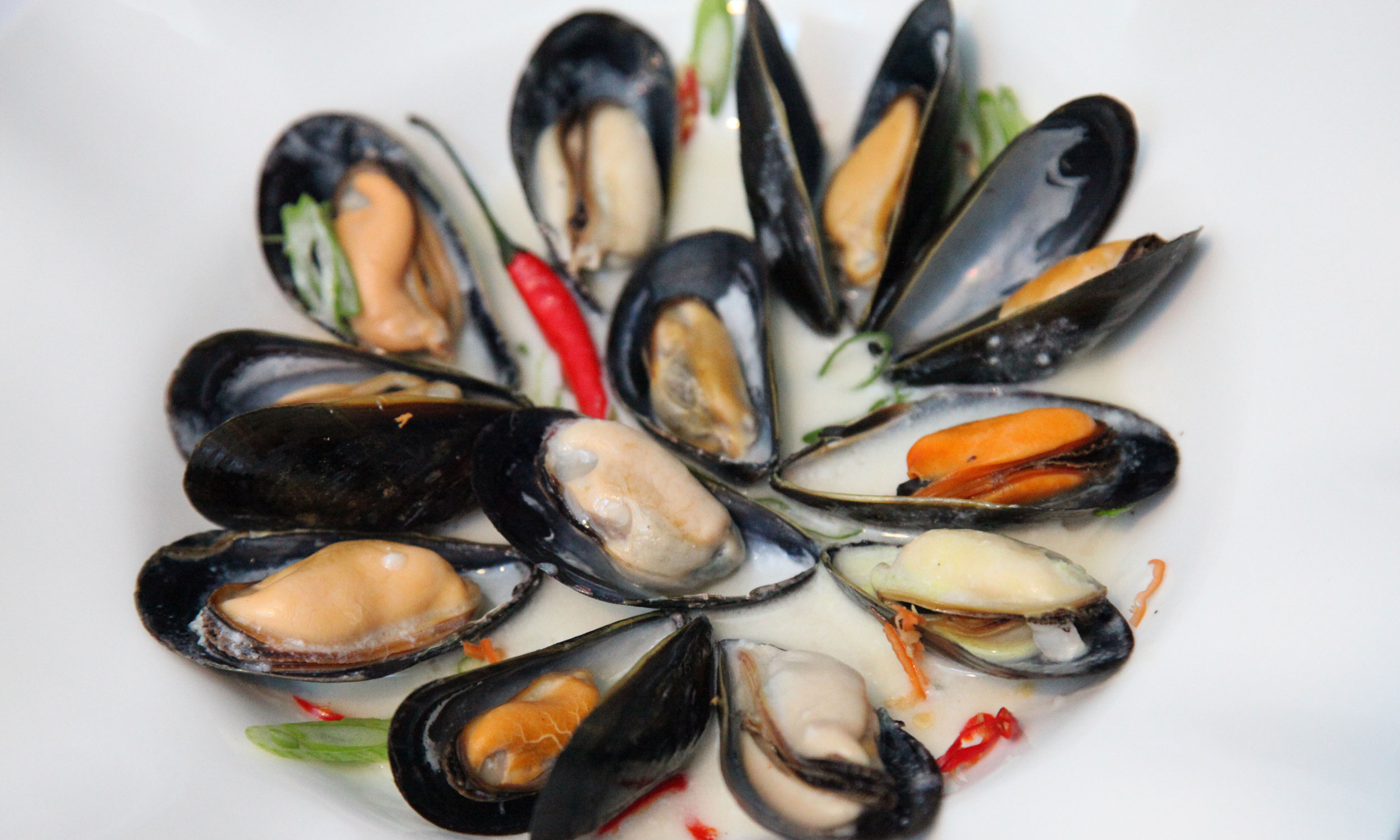 how to cook mussels at home