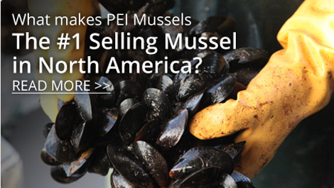 Top Selling Mussel